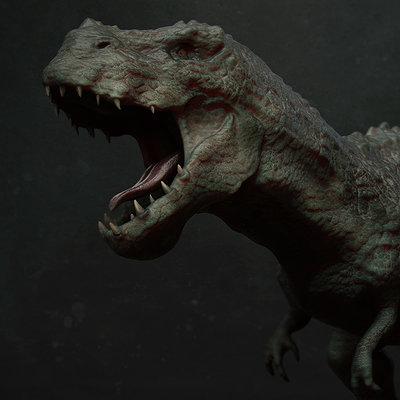 Ste flack v rex01