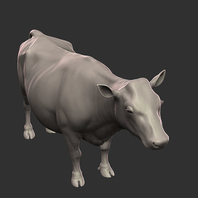 Fabien yorgandjian cow 01