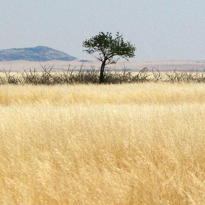 Fabien yorgandjian namibie 01