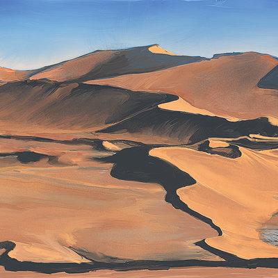 Thijs de vries desert