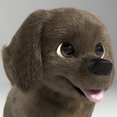 Thales simonato puppy v3 a thumbnail