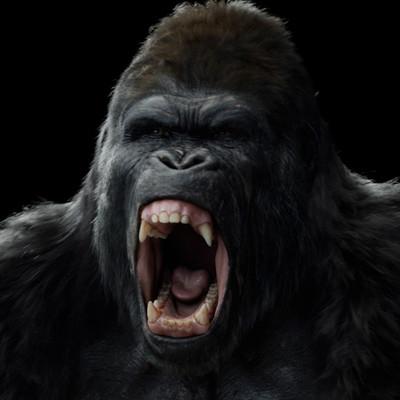 Mark kobrin markkobrin apes