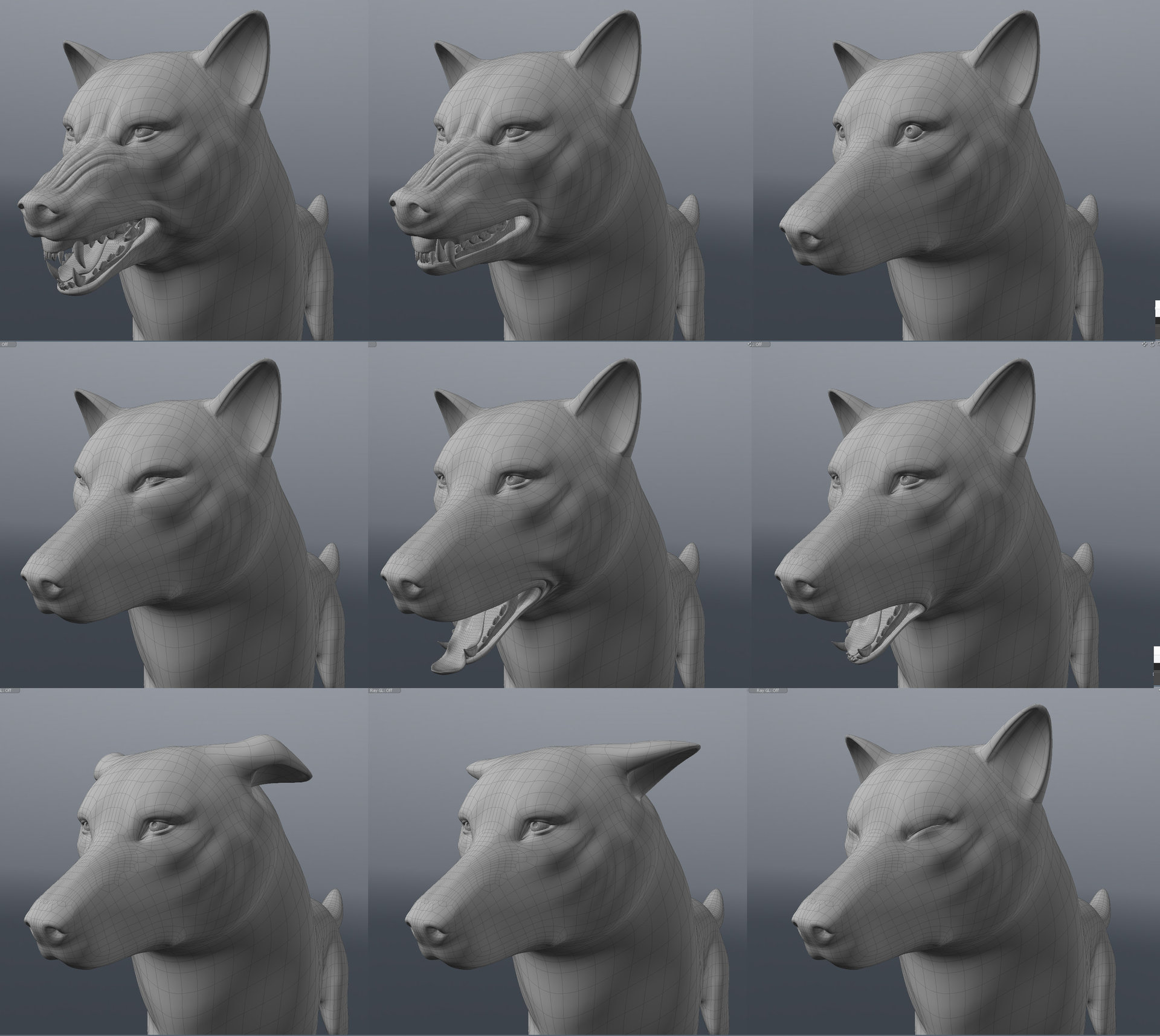 Wolf morph