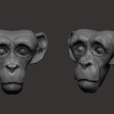 Ali maher monkey