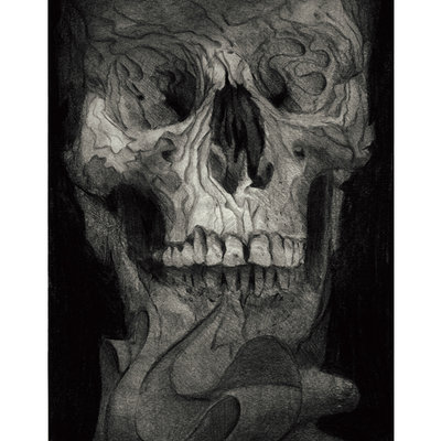 Fragmented skull2