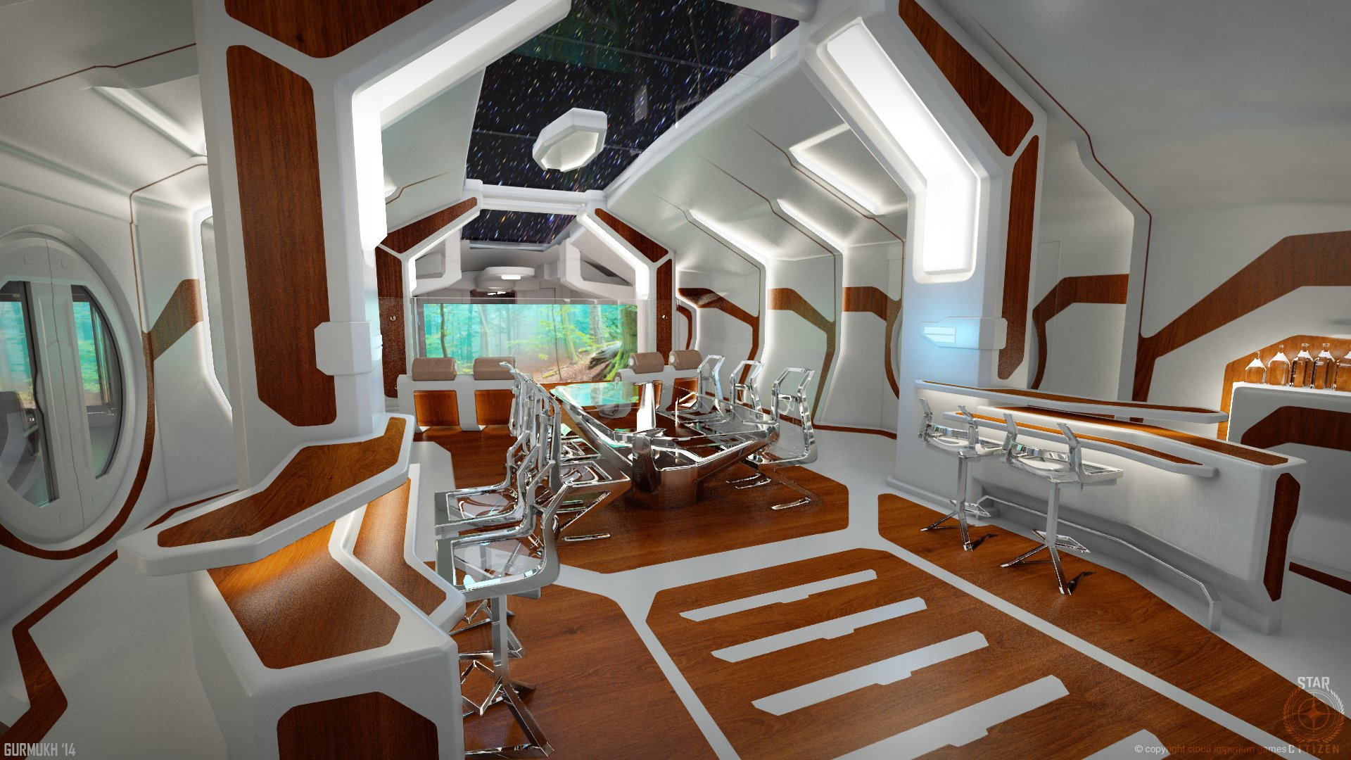 Gurmukh bhasin 1 constellation phoenix int mian cabin bhasin 01
