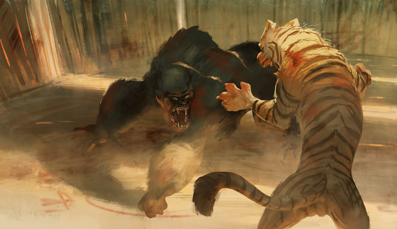 Gorilla Vs Tiger