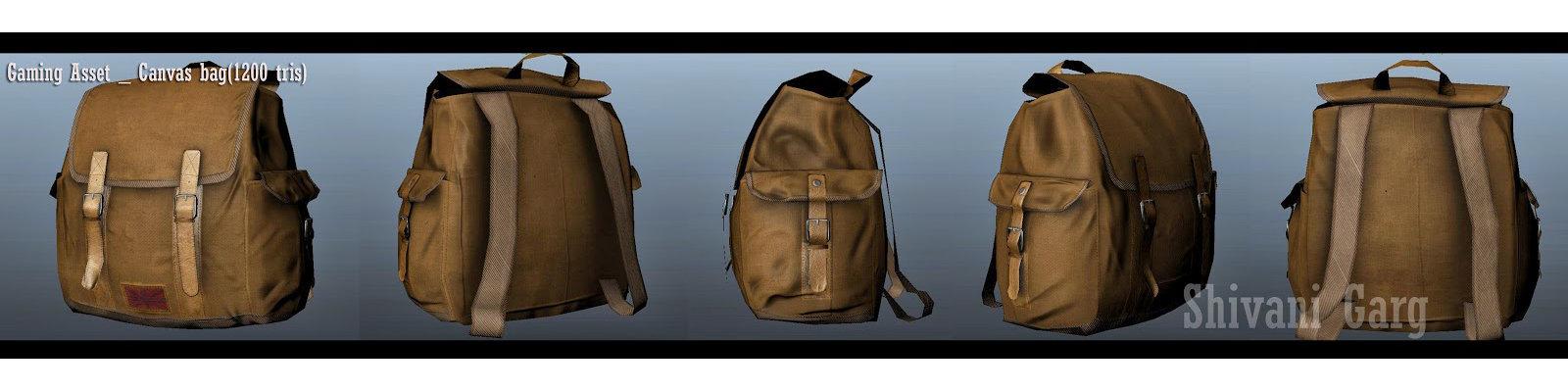 Shivani garg canvas bag