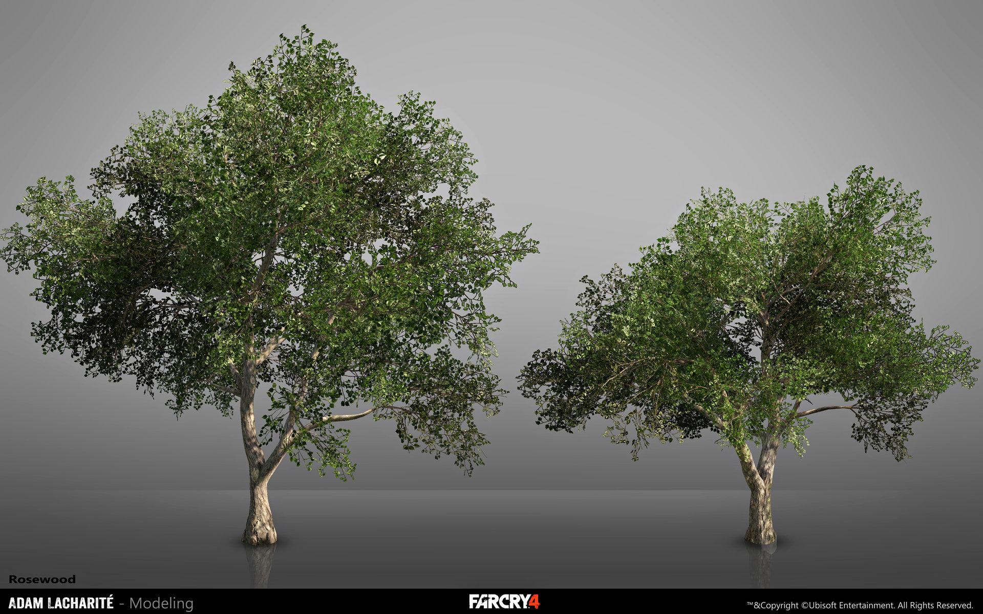 adam-lacharite-lefebvre-fc4-rosewood-adamlacharite.jpg?1427147705