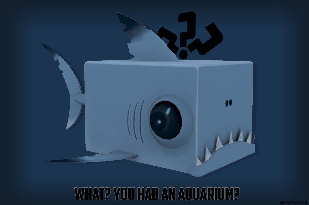 travis-evashkevich-cube-shark-presentation.jpg?1430861012
