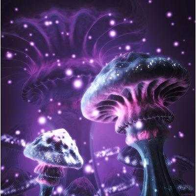 Mike robinson mushrooms