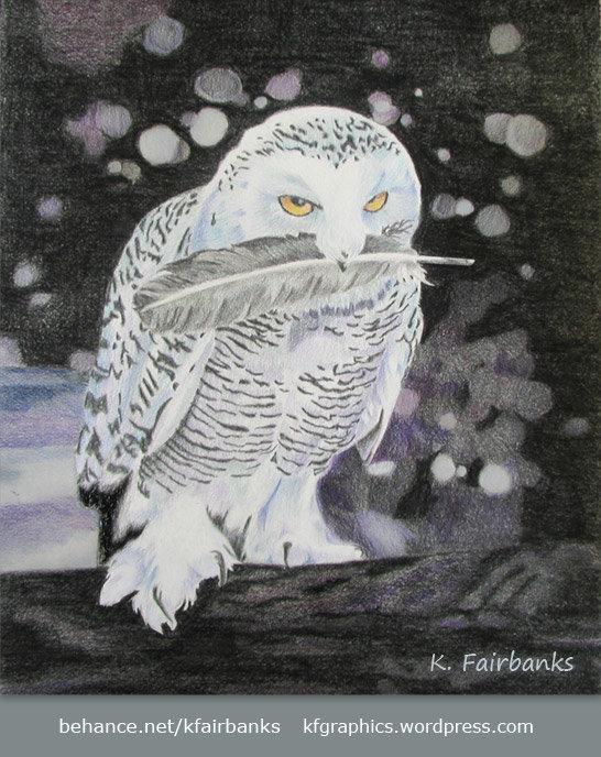 K fairbanks owlsnow by k fairbanks