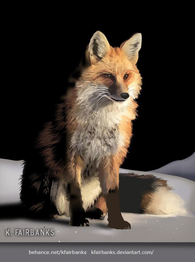 K fairbanks foxinsnow by k fairbanks