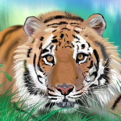K fairbanks tiger by k fairbanks