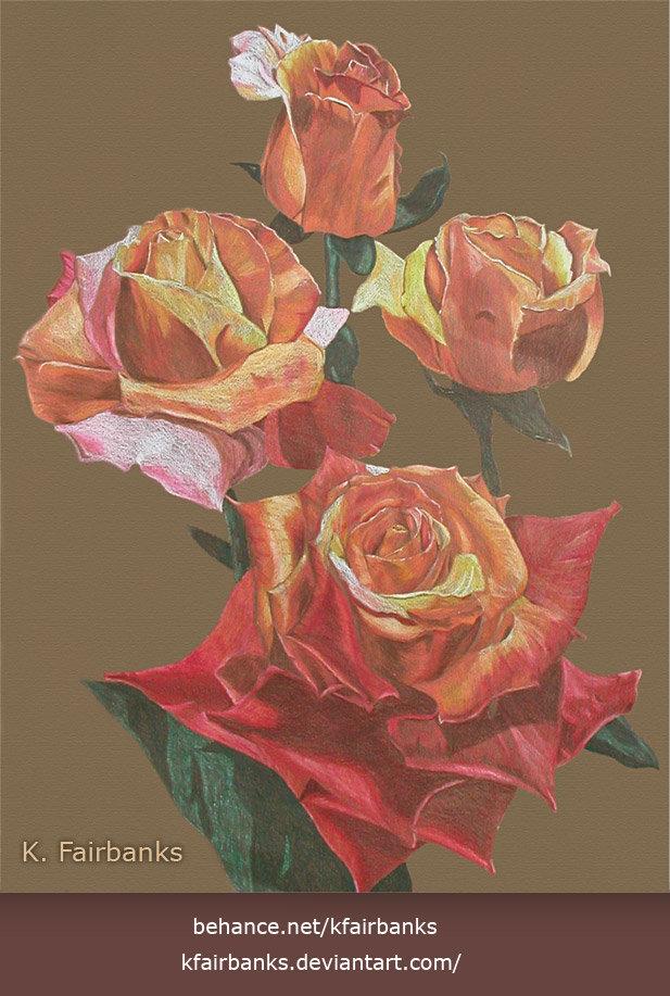 K fairbanks roses2 by k fairbanks