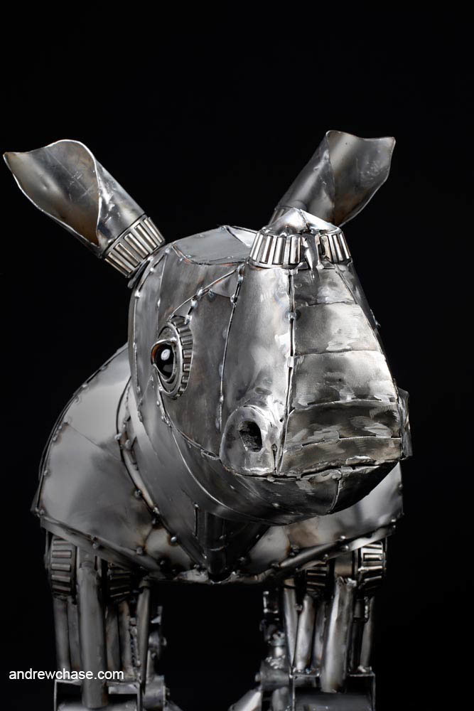 Andrew chase baby rhino metal sculpture friendly 1