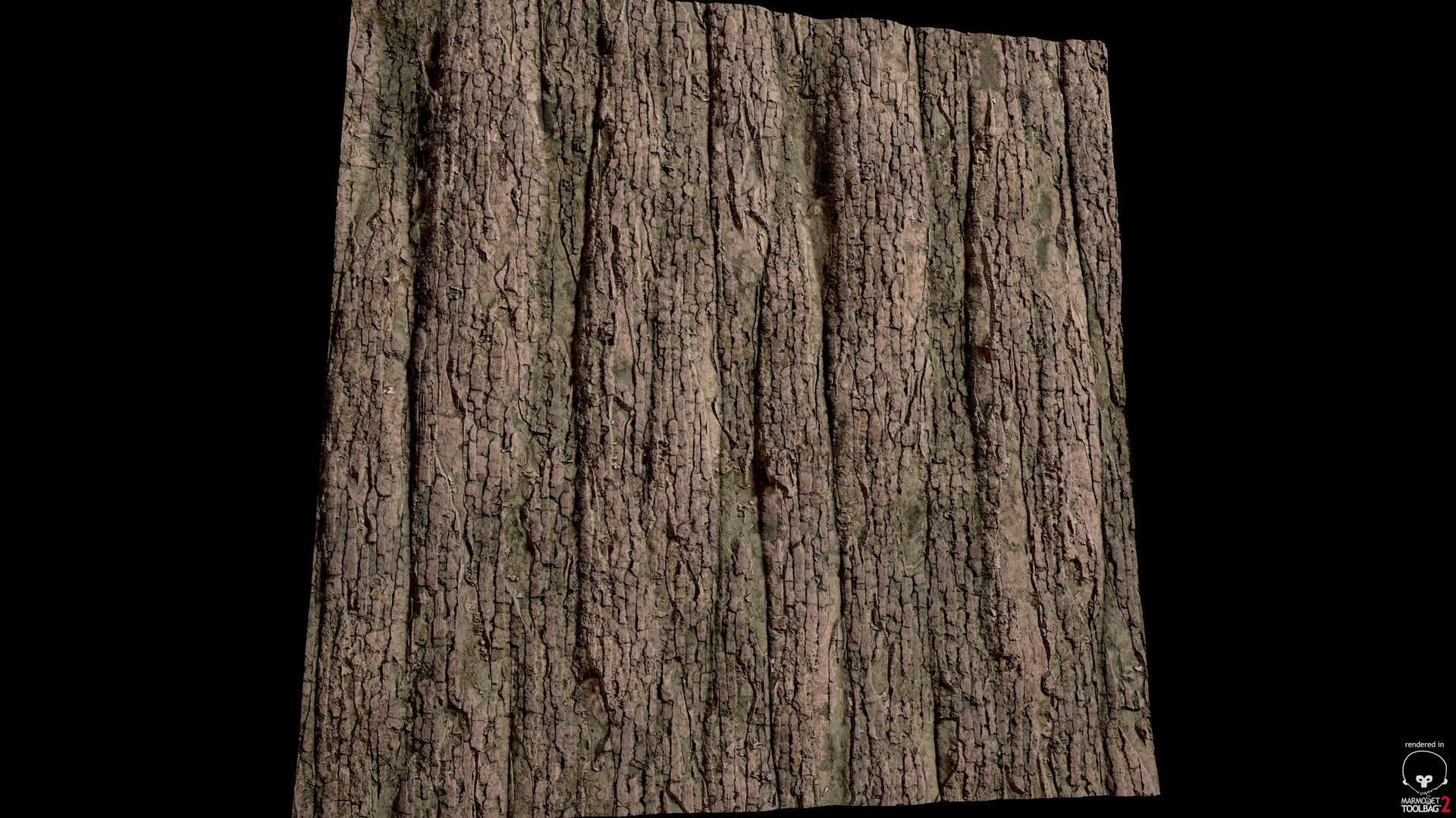 sebastian-schade-substance-bark-2.jpg?1437842305