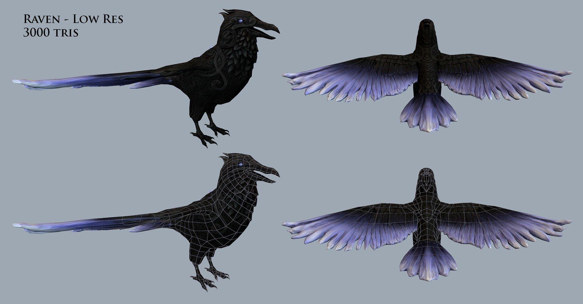 Liz edwards elizabeth edwards raven low