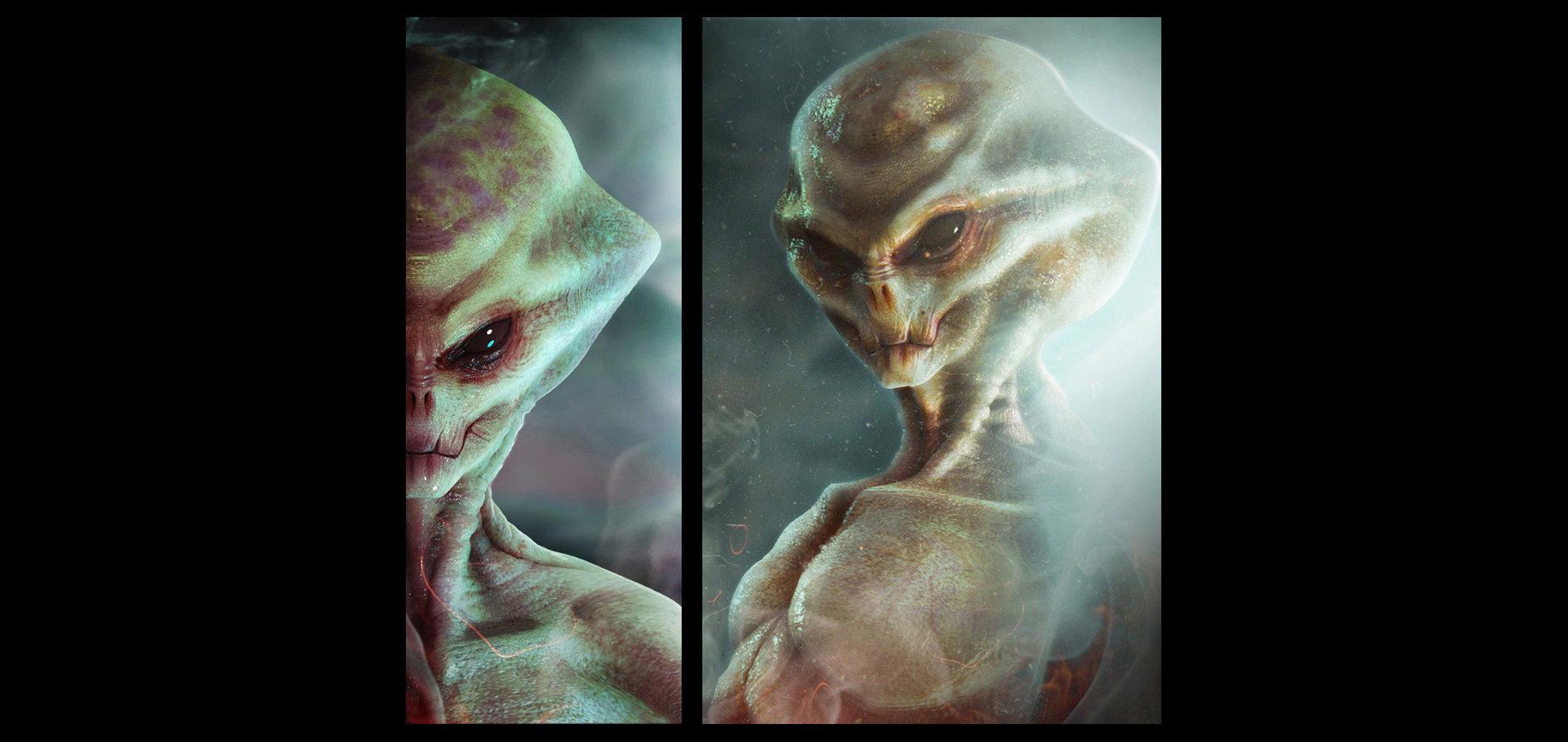 Alexandr novitskiy alien the grey 02