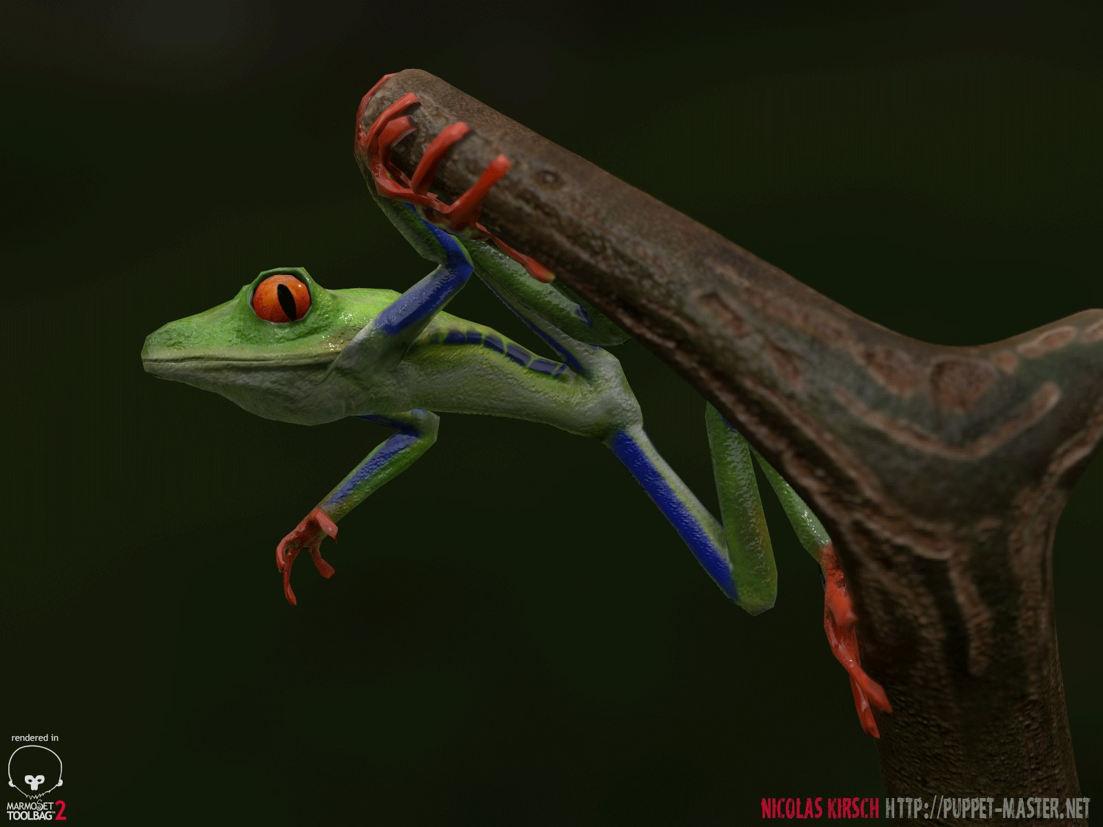 nicolas-kirsch-treefrog-superhero-04.jpg?1442191055