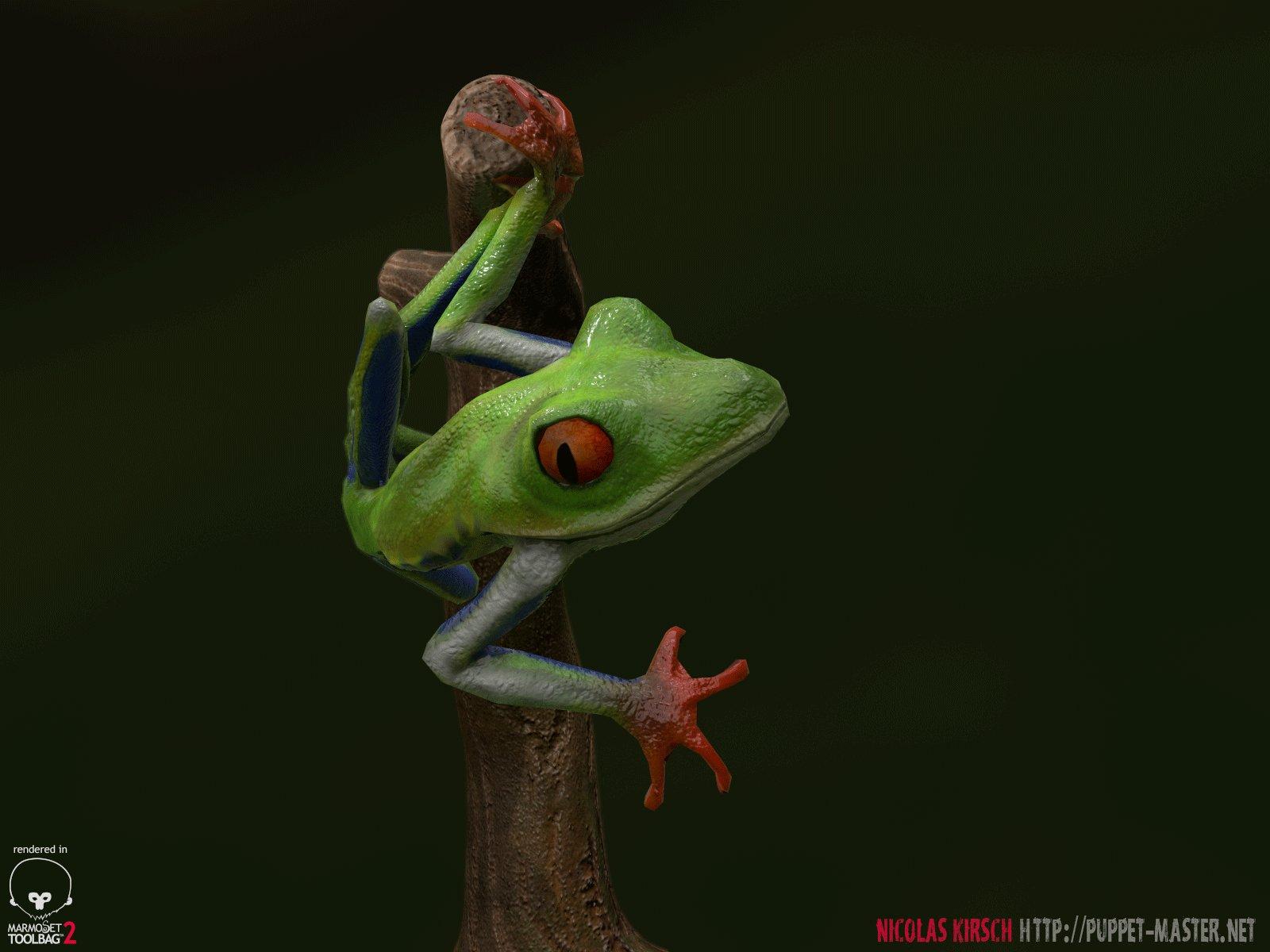 nicolas-kirsch-treefrog-superhero-05.jpg?1442191076