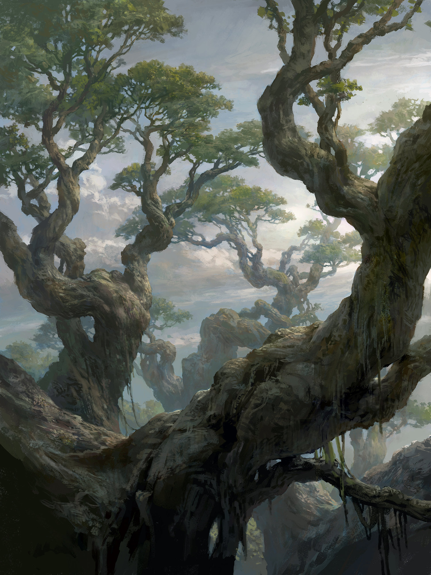 Tianhua xu forest c8d