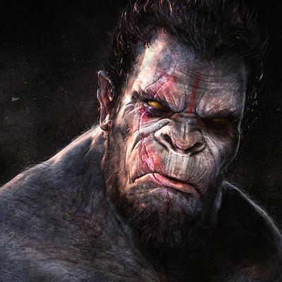 Adnan ali gorilla6