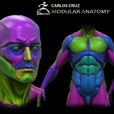 Carlos cruz marketing01