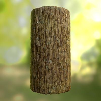 David decoster decoster tree bark