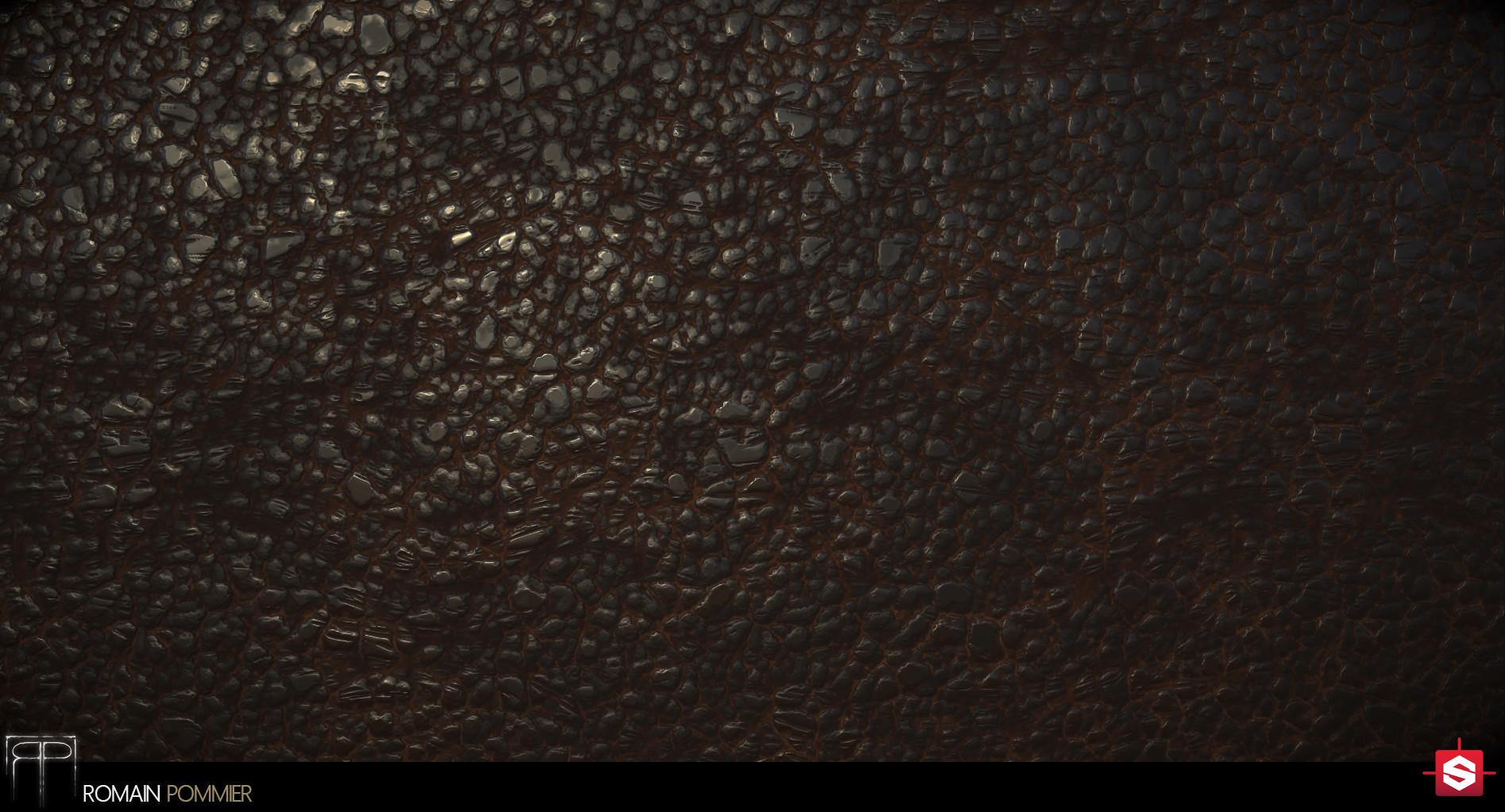 Romain pommier leather