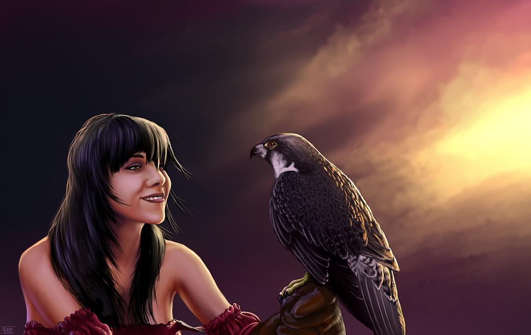 Casey weeks sunset falconer final