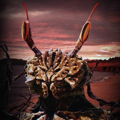 Josh marlar crabdude jmarlar 002