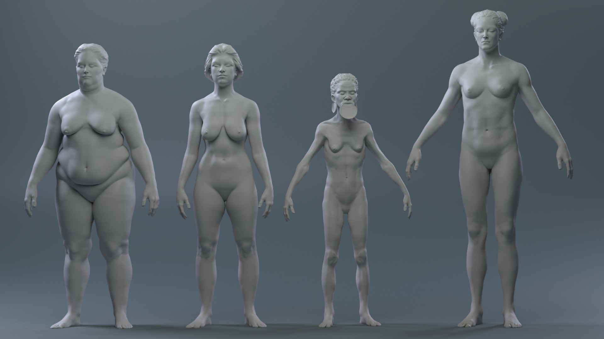 Body Types - Anatomy Study