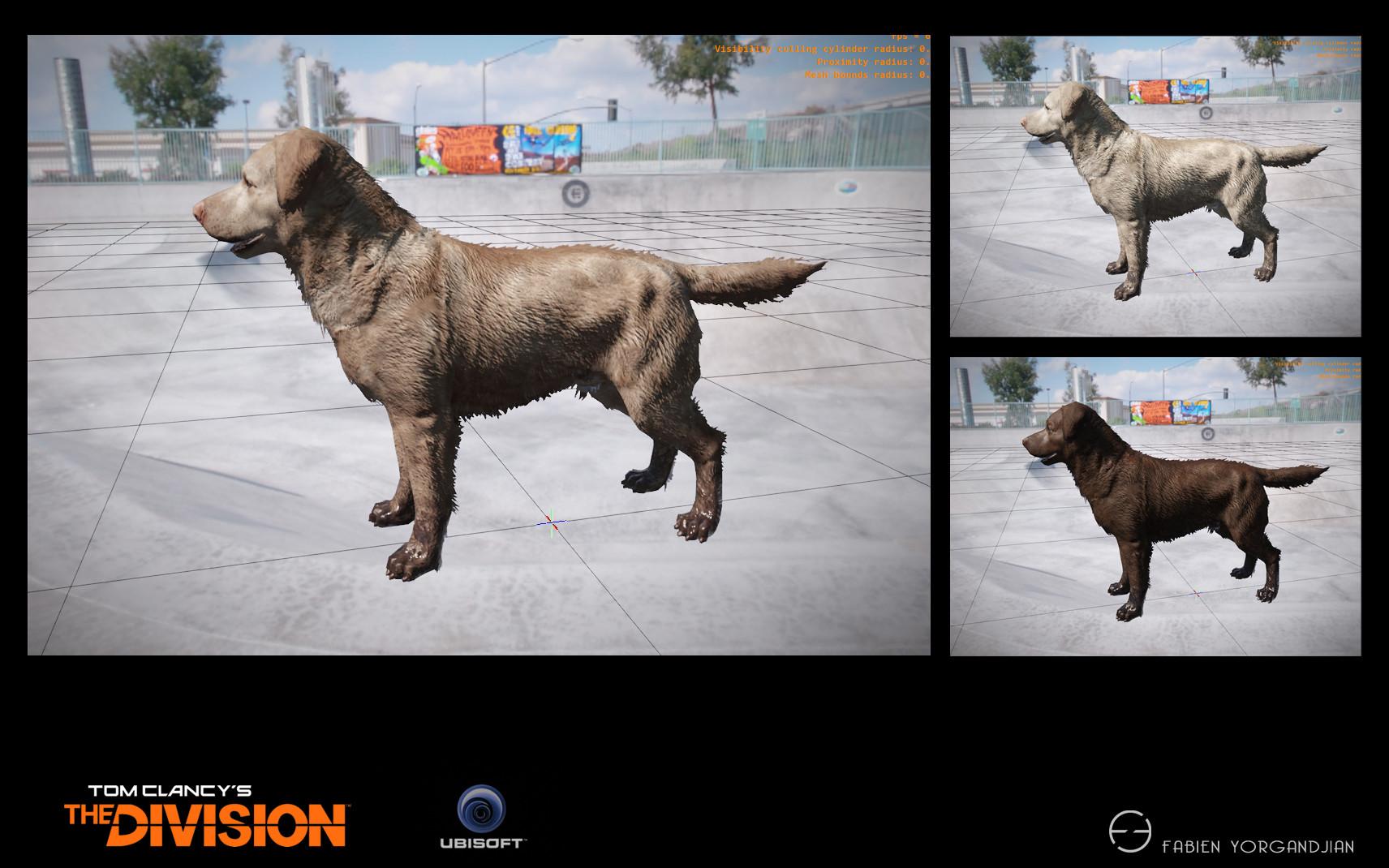 Fabien yorgandjian the division dog05 ingame