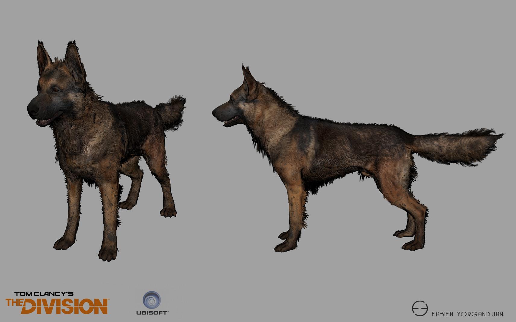 Fabien yorgandjian the division dog01 ingame