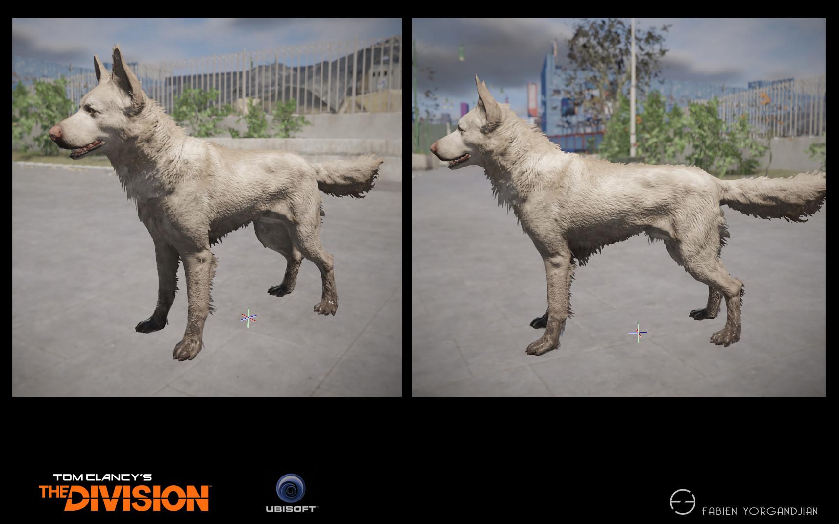Fabien yorgandjian the division dog04 ingame