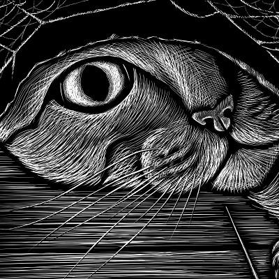John ciarfuglia mouse cat 72