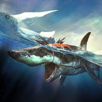 Rocky meng shark
