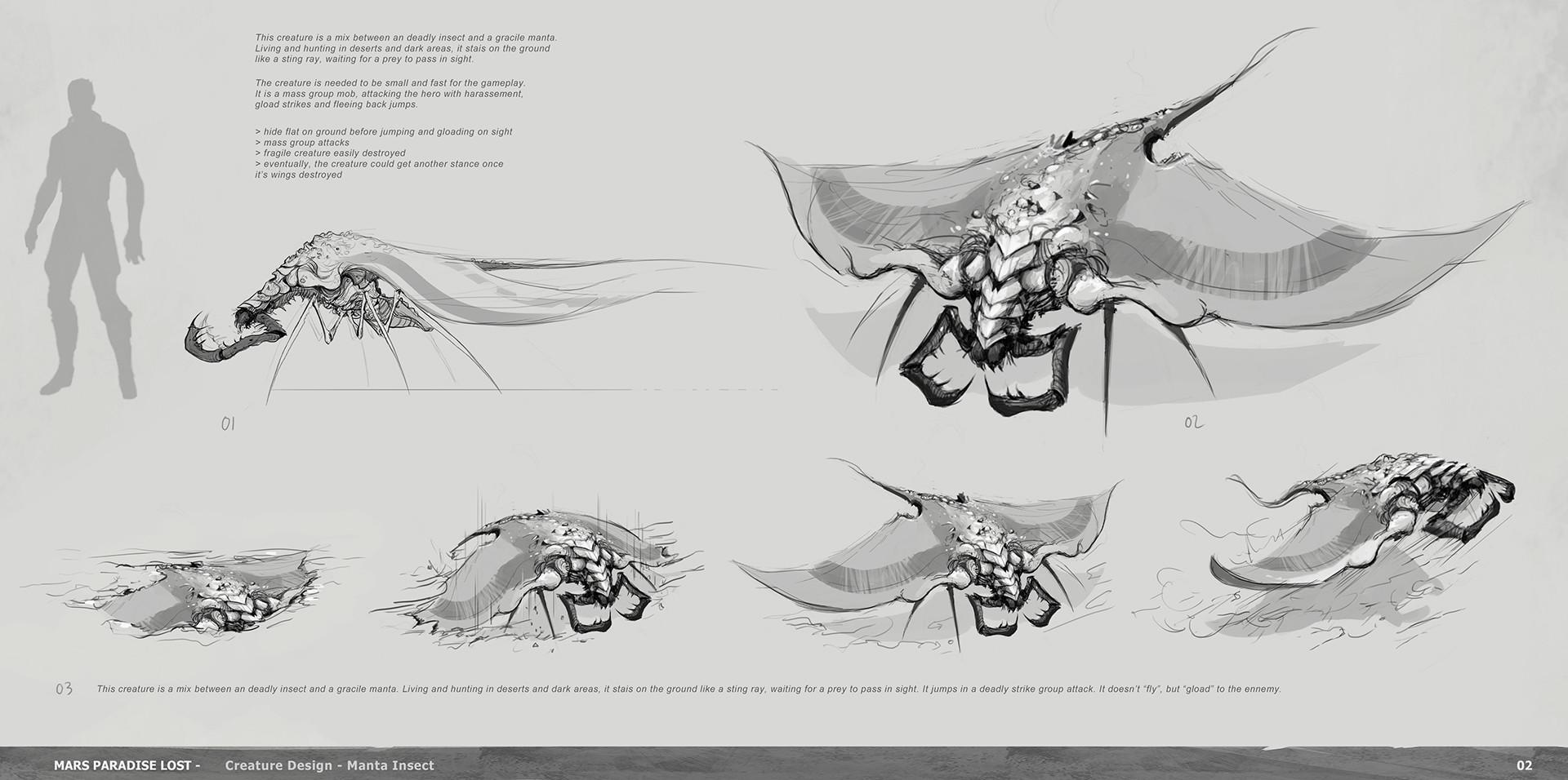 Alexandre chaudret mpl creature manta insect research02