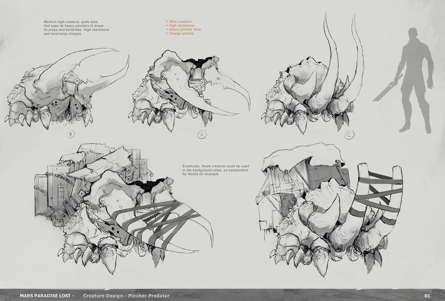 Alexandre chaudret mpl creature pincher research01