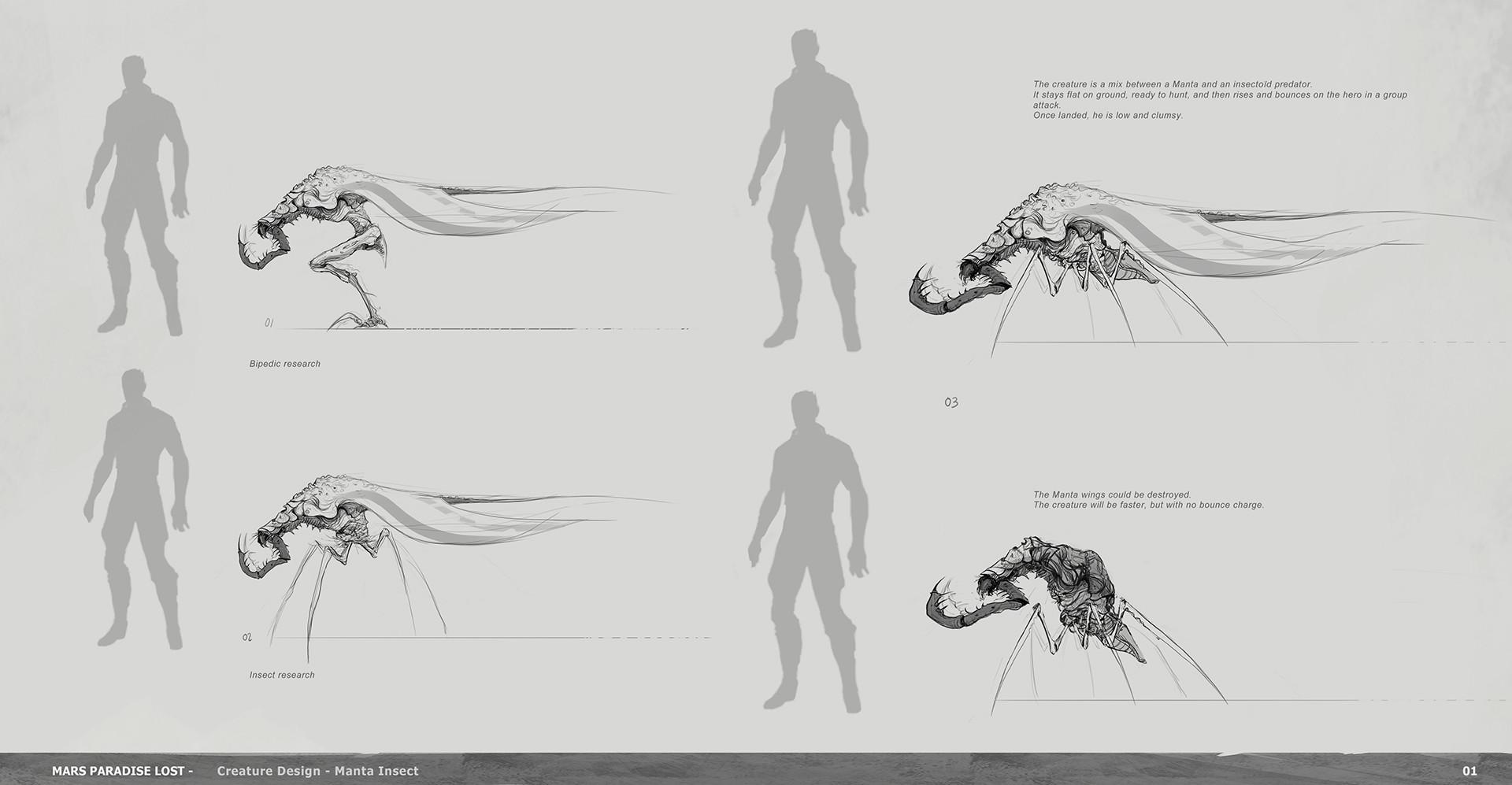 Alexandre chaudret mpl creature manta insect research01