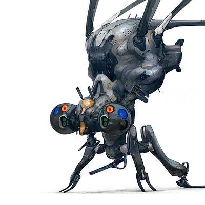 Tipa  graphic moskit 01