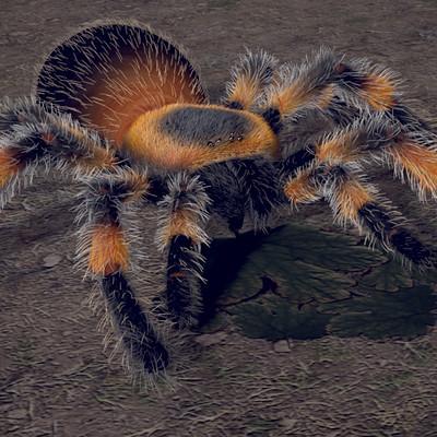 Veronica granadero spider 02