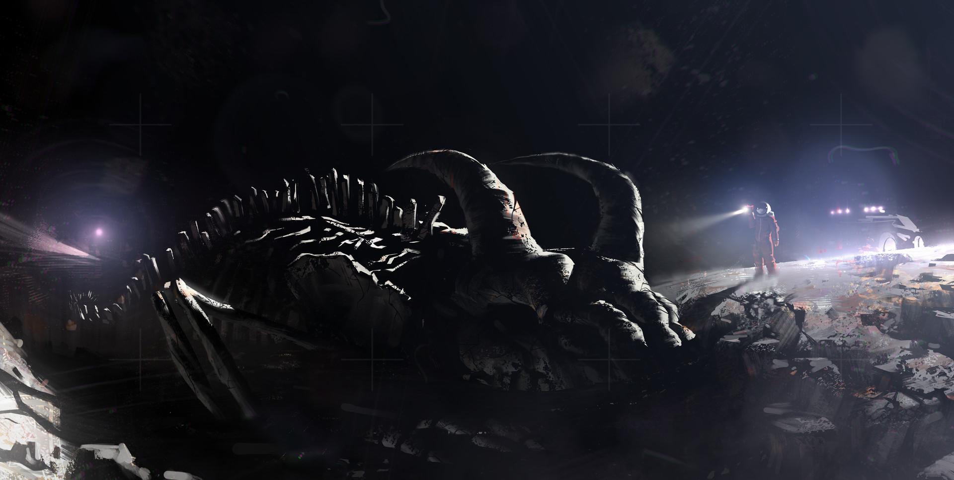 Matt tkocz moon fossils