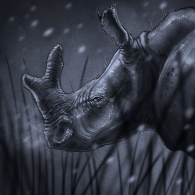 Adam milicevic rhino thing