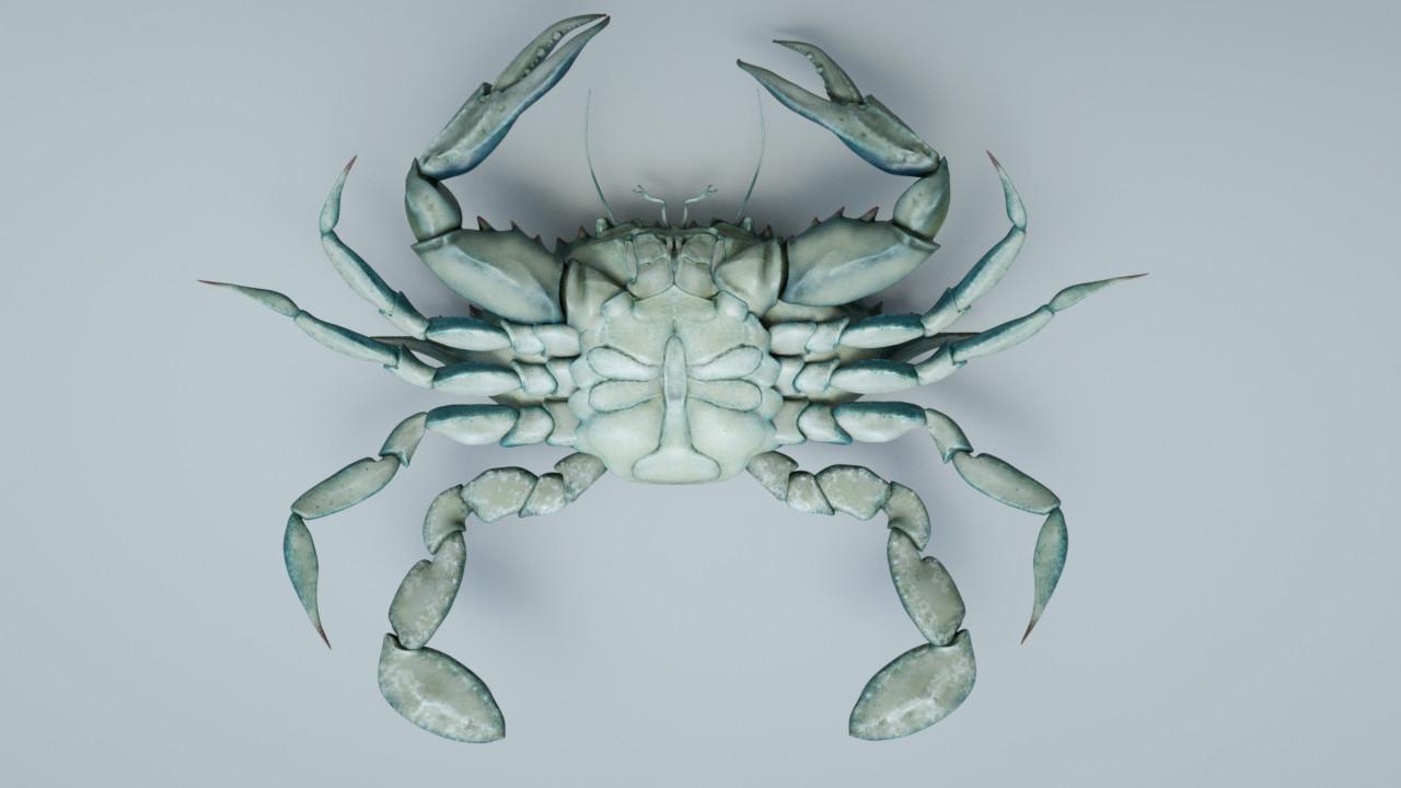 Eric keller crab03