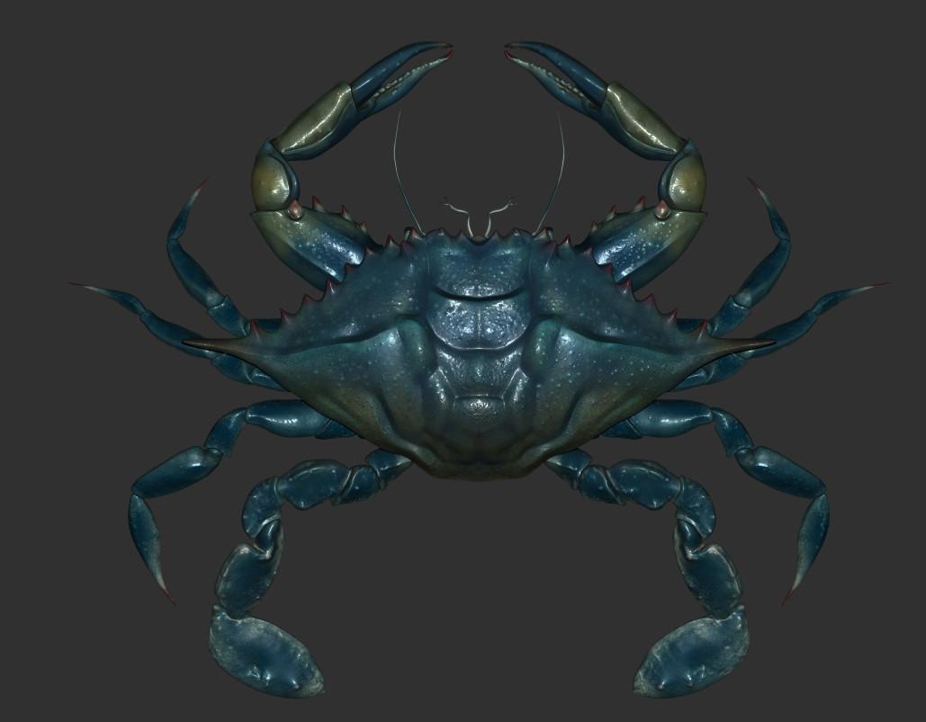 Eric keller crabzbrush01