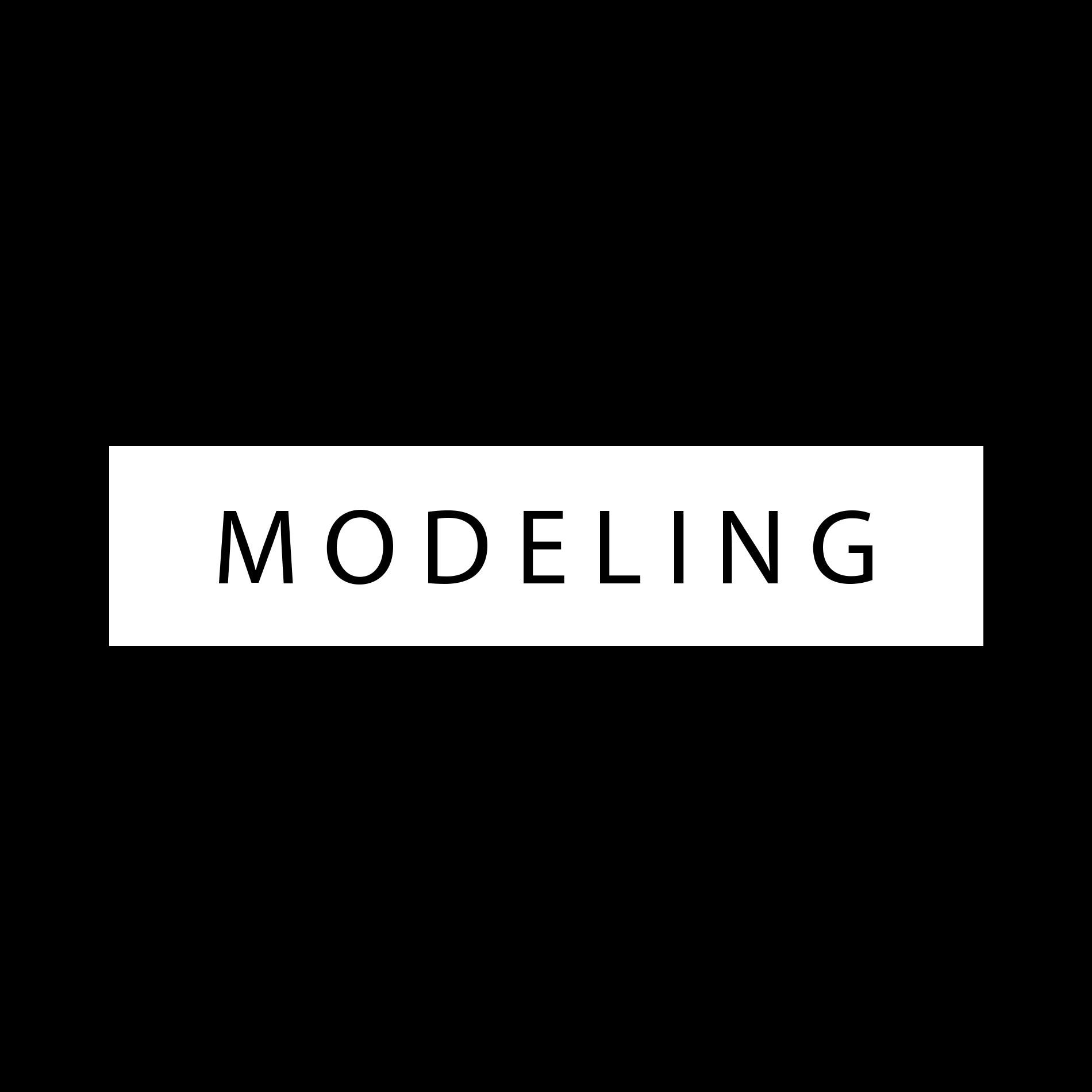 Fabricio rezende modeling