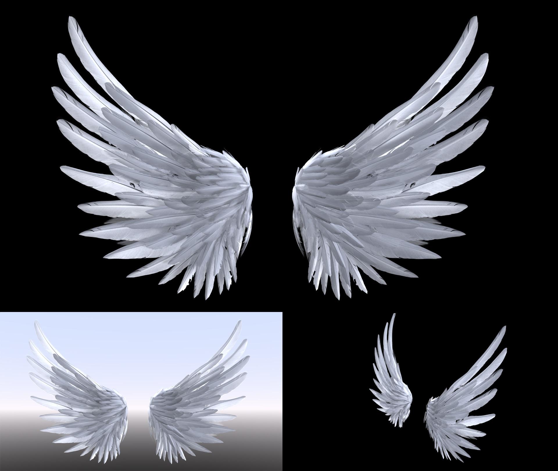 Ezra szigetti wings