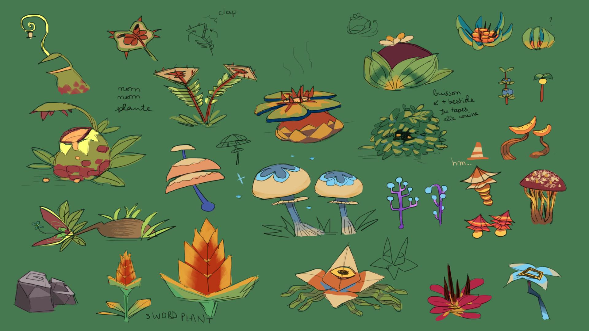 Beatrice beauval concept plantass